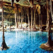 Limpieza de Cenotes