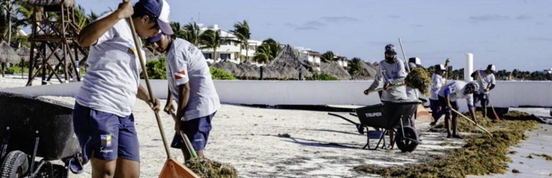 Otro de nuestros Servicios son la Limpeza de Playas